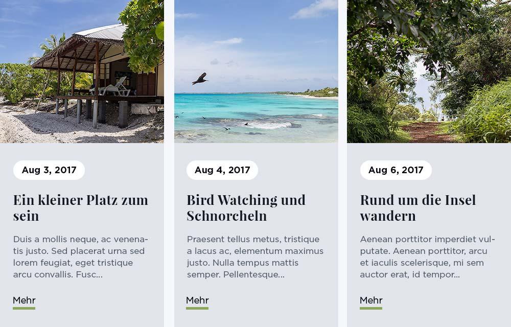 Ansicht von drei Blogartikeln auf einer mit dem Designer Homepage-Baukasten erstellten Webseite.