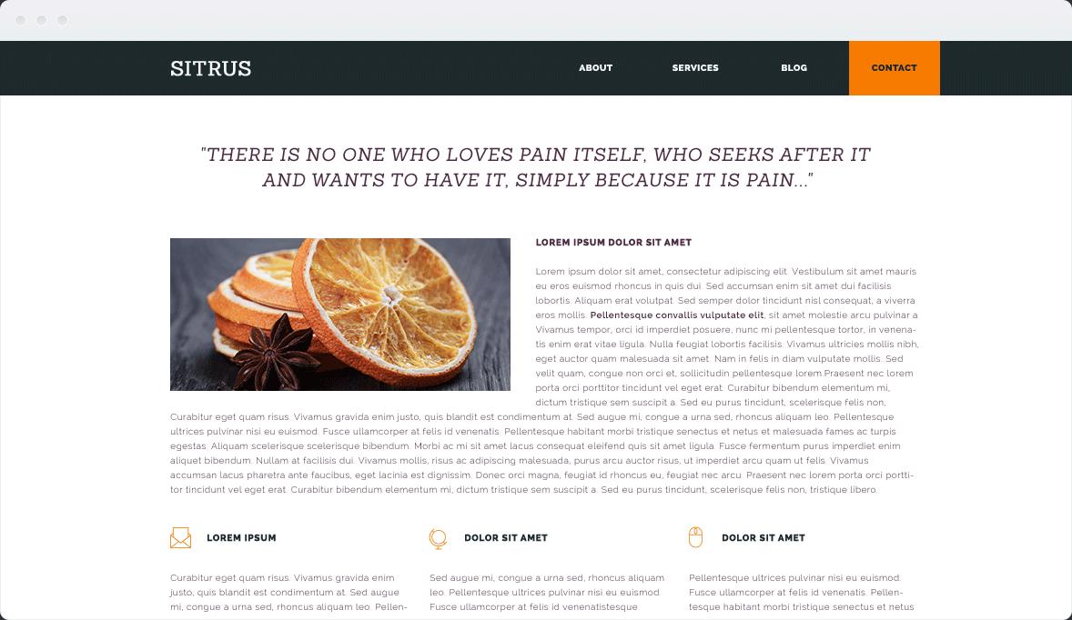 Screenshot Desktop Design Sitrus 2