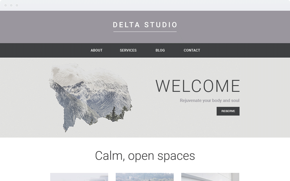 Screenshot Design Delta Studio