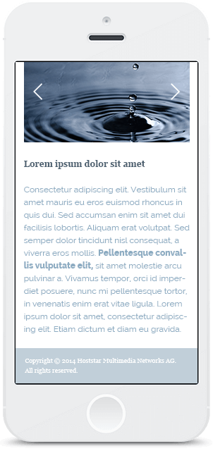 Screenshot Smartphone Design Water & Wood 3